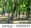 Blurred view of green trees and playground 43668929