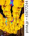 長崎 中秋節 ランタンの写真 43677244