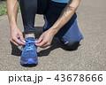 運動 ランニング前に靴ひもを結ぶ男性 43678666