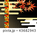 紅葉 秋 楓のイラスト 43682943