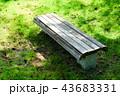 公園のベンチ 43683331