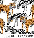 パターン 柄 模様のイラスト 43683366