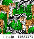 パターン 柄 模様のイラスト 43683373