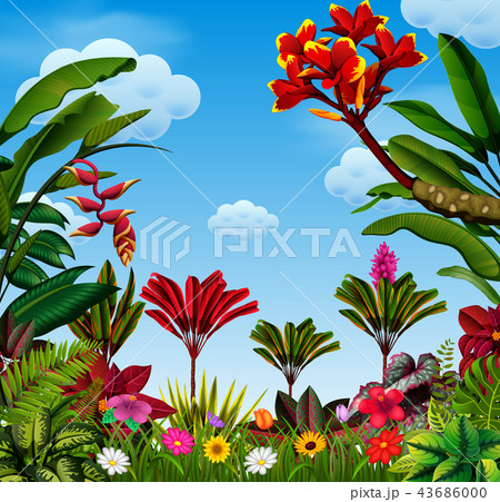 an awasome view with a lot of leave and flower  43686000
