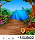 森林 林 森のイラスト 43686022