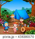 森林 林 森のイラスト 43686070