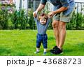 お父さん 父 父親の写真 43688723