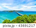 角島大橋 橋 海の写真 43691217