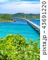 角島 角島大橋 橋の写真 43691220