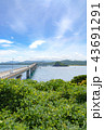 角島 角島大橋 橋の写真 43691291