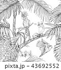 プランツ 植物 花のイラスト 43692552