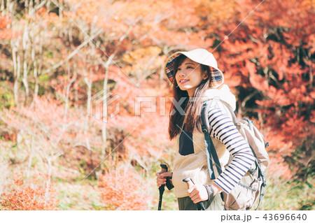 紅葉の山をトレッキングをする女性  43696640