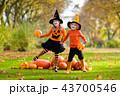ハロウィン キッズ 子供の写真 43700546