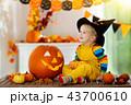 ハロウィン 子供 カボチャの写真 43700610