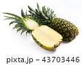 パイナップル 果物 果実の写真 43703446