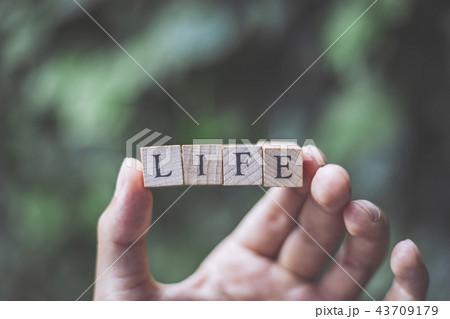 LIFEを持つ人の手 43709179