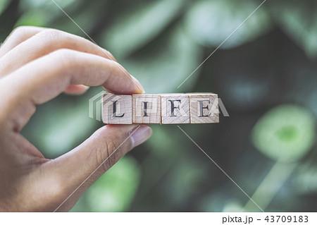 LIFEを持つ人の手 43709183