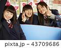 遊園地で遊ぶ女子高生 43709686