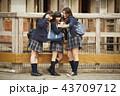 動物園で遊ぶ女子高生 43709712