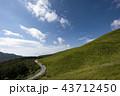 風景 山 道の写真 43712450