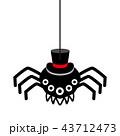 蜘蛛 帽子 ハロウィンのイラスト 43712473