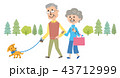 高齢者 犬 散歩 イラスト  43712999