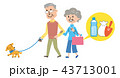 高齢者 犬 散歩 イラスト 43713001