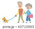 高齢者 犬 散歩 イラスト 43713003