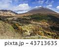 浅間山 紅葉 冠雪の写真 43713635