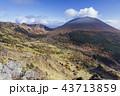 浅間山 紅葉 冠雪の写真 43713859