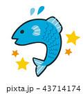十二星座の魚座のイラスト。元気の飛び跳ねる魚のキャラクター。 43714174