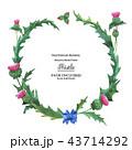 フレーム 額縁 花のイラスト 43714292