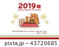 年賀状 亥 猪のイラスト 43720685