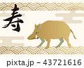 イノシシの年賀状。縁起の良いイラスト。亥年の年賀状。新春の素材。 43721616