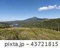 秋の空とススキの草原 43721815
