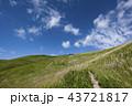 秋の空とススキの草原 43721817