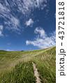秋の空とススキの草原 43721818