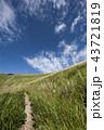 秋の空とススキの草原 43721819