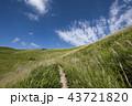 秋の空とススキの草原 43721820