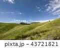 秋の空とススキの草原 43721821