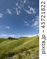 秋の空とススキの草原 43721822