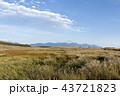 秋の空とススキの草原 43721823