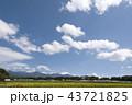 水田の風景 43721825