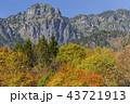 紅葉の中の錫杖岳 43721913