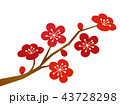 梅 花 梅の花のイラスト 43728298