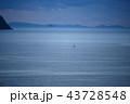 風景 海 船の写真 43728548