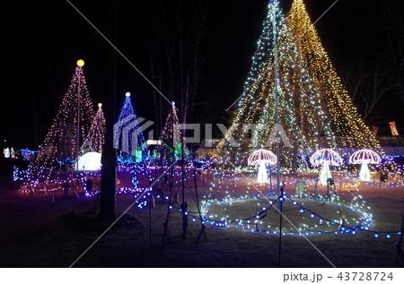 群馬県榛名湖のクリスマスイルミネーションフェスティバル、抽象的なきらきら装飾、ピンぼけの光とハート 43728724