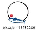 筆文字 鯖 魚のイラスト 43732289
