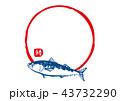 筆文字 鯖 魚のイラスト 43732290