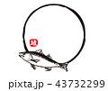 鱸 筆文字 魚のイラスト 43732299